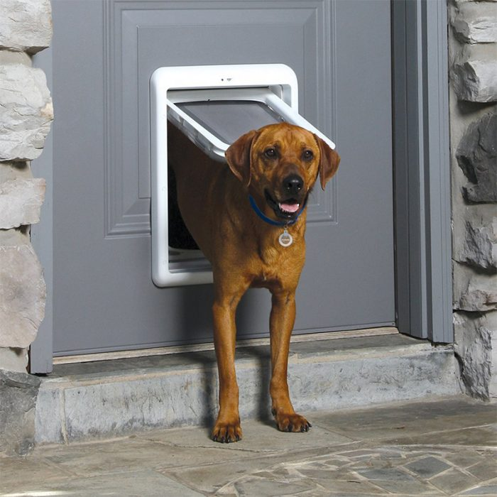 PetSafe SmartDoor Lifestyle 1